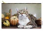 Cat And Pumpkins Carry-all Pouch