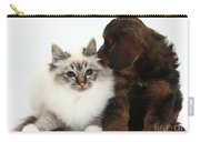 Cavapoo And Birman Cat Carry-all Pouch
