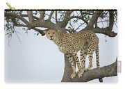 Cheetah Acinonyx Jubatus Female Carry-all Pouch