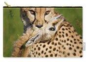 Cheetah Acinonyx Jubatus With Its Kill Carry-all Pouch