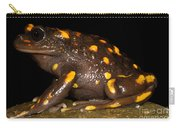 Chilean Mountains False Toad Carry-all Pouch