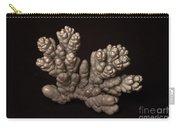 Chromium Carry-all Pouch