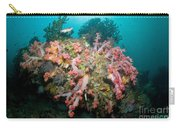 Colorful Reef Scene, Komodo, Indonesia Carry-all Pouch