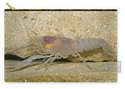 Crayfish Carry-all Pouch