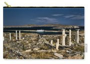 Delos Island Carry-all Pouch