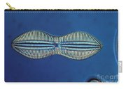 Diatom - Diploneis Crabro Carry-all Pouch