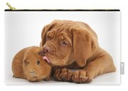 Dogue De Bordeaux Puppy With Red Guinea Carry-all Pouch