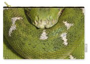 Emerald Tree Boa Corallus Caninus Carry-all Pouch by Pete Oxford