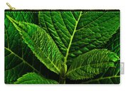 Emerging Hydrangea Leaf Carry-all Pouch