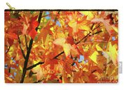 Fall Colors Carry-all Pouch by Carlos Caetano