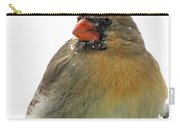 Female Cardinal In The Snow Carry-all Pouch