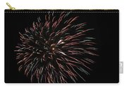 Fireworks Fun 3 Carry-all Pouch