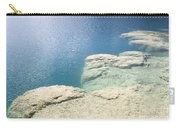 Freshwater Reef Carry-all Pouch