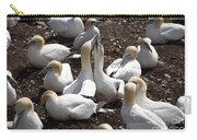 Gannet Birds Showing Fencing Behavior Carry-all Pouch