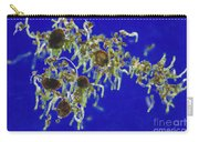 Germinating Fern Spores Carry-all Pouch