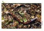 Glowworm Carry-all Pouch