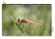 Golden Dragonfly Carry-all Pouch