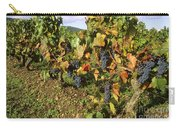Grapes Growing On Vine Carry-all Pouch