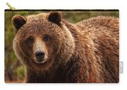 Grizzly Bear, Yukon Carry-all Pouch