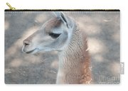 Guanaco Carry-all Pouch