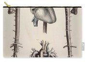 Historical Anatomical Illustration Carry-all Pouch
