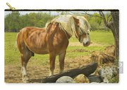 Horse Near Strone Wall In Field Spring Maine Carry-all Pouch