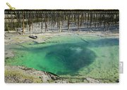 Hot Springs Yellowstone National Park Carry-all Pouch