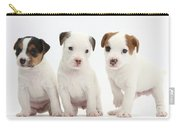Jack Russell Puppies Carry-all Pouch