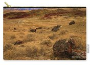 John Day Painted Hills Carry-all Pouch