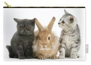 Kittens And Rabbit Carry-all Pouch