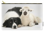 Lamb And Border Collie Carry-all Pouch