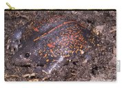 Mexican Burrowing Toad Carry-all Pouch