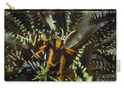Orange And Brown Elegant Squat Lobster Carry-all Pouch