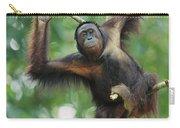 Orangutan Pongo Pygmaeus Adult Sitting Carry-all Pouch
