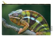 Panther Chameleon Chamaeleo Pardalis Carry-all Pouch