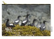 Pigeon Guillemot Cepphus Columba Group Carry-all Pouch