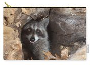 Raccoon Procyon Lotor Carry-all Pouch