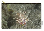 Rare Tiger Shrimp On Volcanic Sand Carry-all Pouch