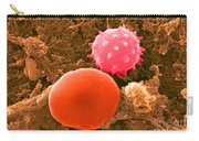 Red And White Blood Cells, Sem Carry-all Pouch
