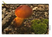 Red Caped Mushroom 3 Carry-all Pouch