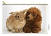 Red Toy Poodle And Rabbit Carry-all Pouch