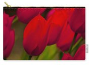 Red Tulips In Holland Carry-all Pouch