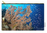 Reef Scene With Sea Fan, Papua New Carry-all Pouch