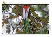 Resplendent Quetzal Carry-all Pouch