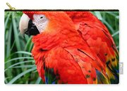 Scalet Macaw Carry-all Pouch