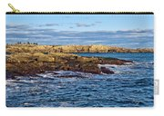 Schoodic Point Acadia National Park Carry-all Pouch