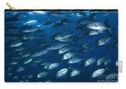 School Of Jacks In Motion, Belize Carry-all Pouch
