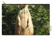 Sentinel Meerkat Carry-all Pouch