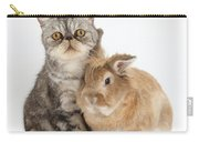 Silver Tabby Cat And Lionhead-cross Carry-all Pouch