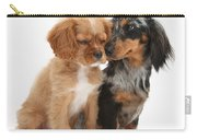 Spaniel & Dachshund Puppies Carry-all Pouch by Mark Taylor